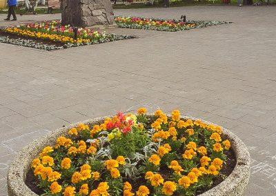 Озеленение города Мурманска